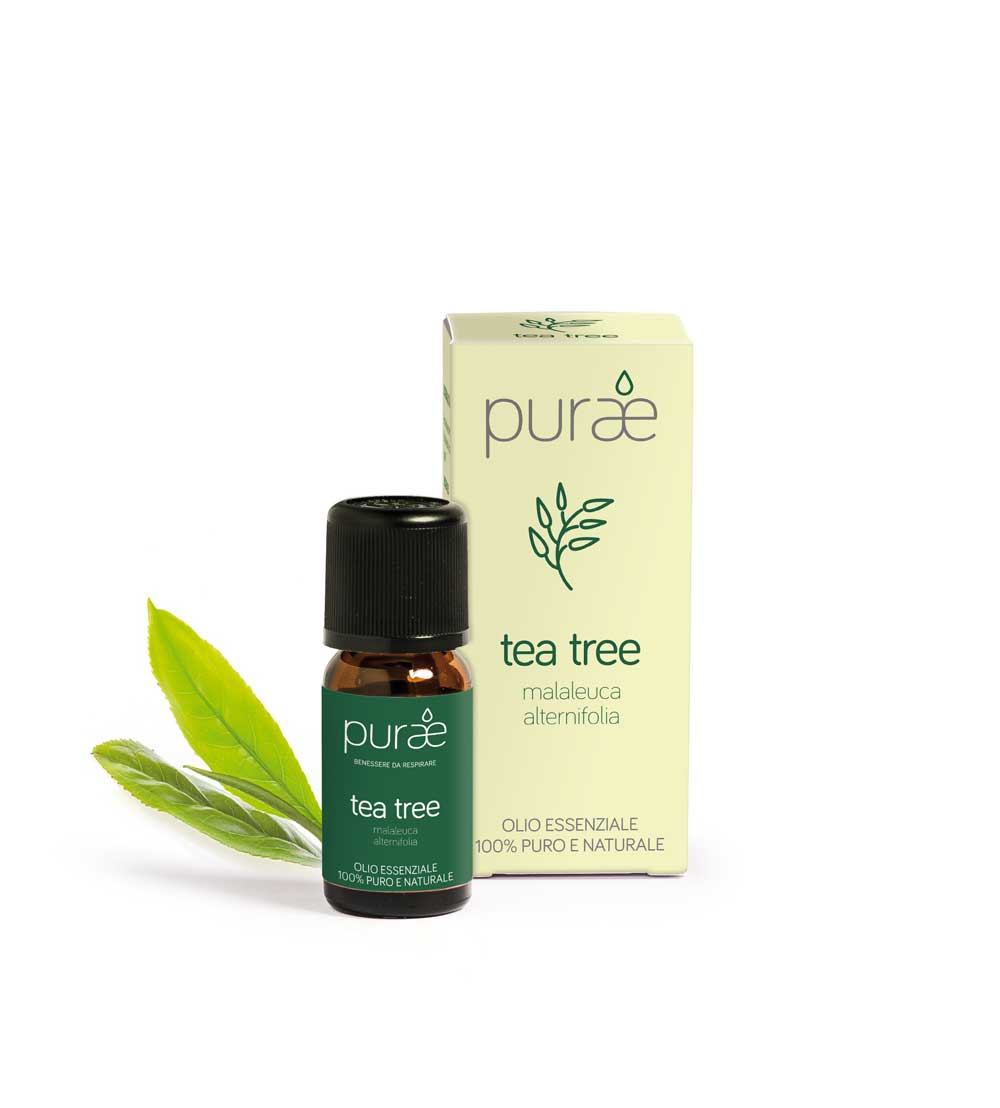 Foto mobile tea tree